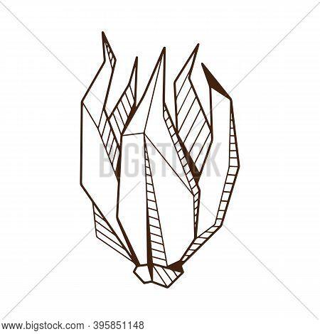 Hand Drawind Geometrical Flower Bud, Ylang-ilang Bud Line Art