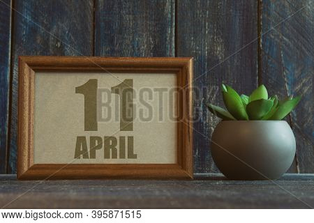 April 11th. Day 11 Of Month, Date In Frame Next To Succulent On Wooden Background Spring Month, Day