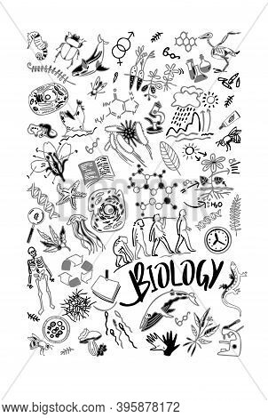Hand Drawn Biological Doodle Set. School Notebook Cover. Biology Icons. Lettering - Biology. Doodle