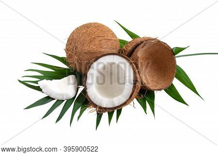 Coconut On A White Background, Isolated. Whole Coconut, Halves, Shells, Pieces Of Coconut On A Green