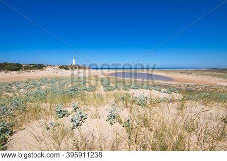 Landscape In Natural Park Of Trafalgar Cape In Cadiz