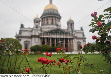 St. Petersburg, Russia - October 5, 2020: Flowers In Front Of St. Isaacs Cathedral. St. Isaacs Cathe