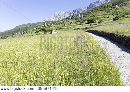 Italian Mountain View In A Sunny Summer Day