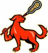 Illustration of a dog holding a lacrosse stick viewed from the side on isolated white background. poster