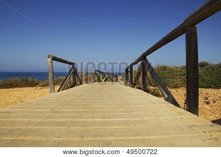 wood walkaway on ocean