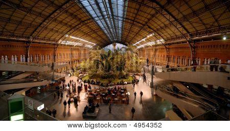 Atocha's Station, Madrid