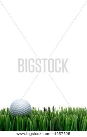 White Golf Ball In Green Grass