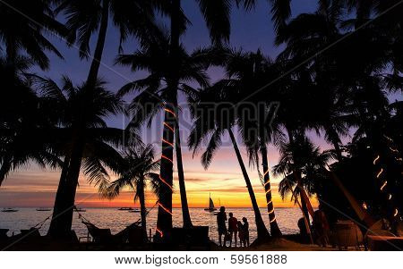 siluet of palm trees during sunset