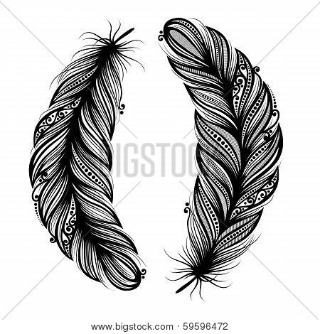 Peerless Decorative Feather (Vector)