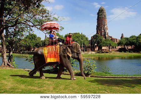 Tourists on an elefant. Ayutthaya