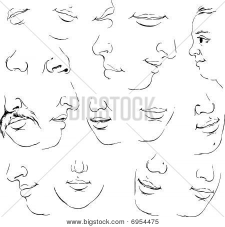 Set of mouth