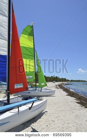 Small Catamarans on a Southeast Florida Beach
