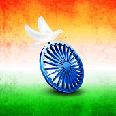 Beautiful white pigeons sitting on Asoka Wheel on national tricolors grungy background for 15th of August, Indian Independence Day celebrations.  poster