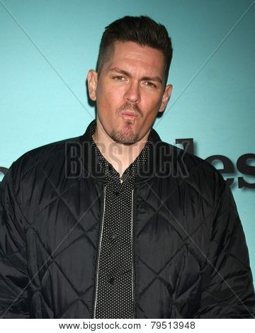 LOS ANGELES - JAN 5:  Steve Howey at the Showtime Celebrates All-New Seasons Of