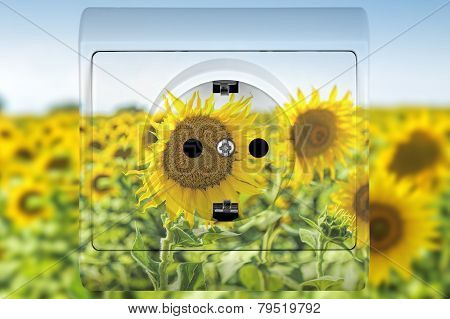 poster of sunflower socket concept for alternative sources of energy