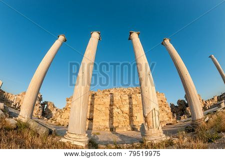 Ruins Of Ancient Salamis. Famagusta District, Cyprus