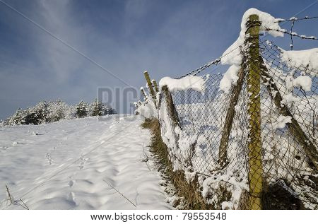 Winter Tale In The Fields Of Northern Bulgaria