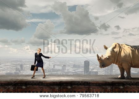 Young pretty businesswoman holding rhino on lead