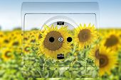 sunflower socket concept for alternative sources of energy poster