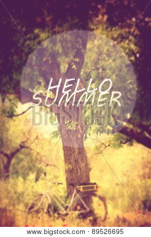 filtered soft focused and filtered hello sumer meadows background