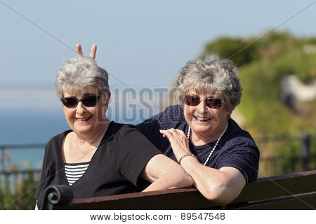 Playful elderly twin sisters