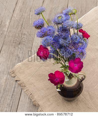 Bouquet Of Blue Globular (globularia) Flowers