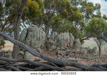 The Rocks In The Reserve