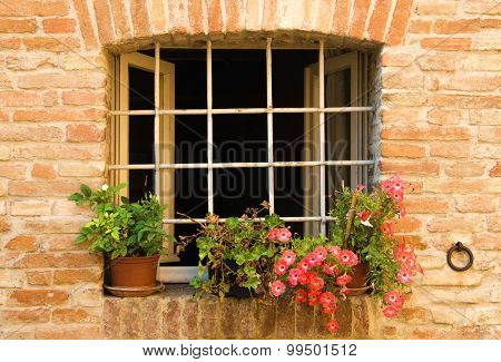 Window with colorful flowers