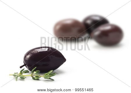 Kalamata, The Spicy Black Olive From Greece, Isolated On White