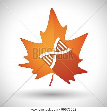 Autumn Leaf Icon With A Dna Sign