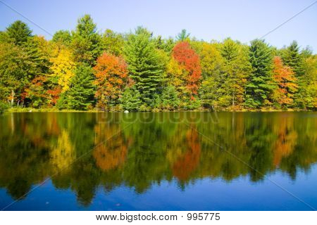 Reflection Of Fall Two