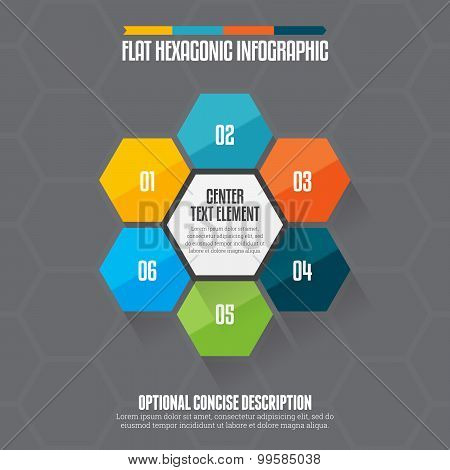 Flat Hexagon Infographic