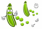 Sweet green pea pod vegetable cartoon character with fresh grains show attention sign. For vegetarian food or agriculture design poster