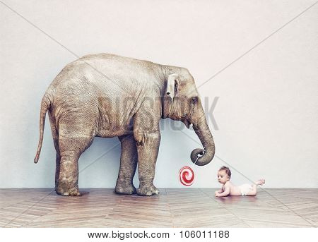 baby elephant and human baby in an empty room. Photo combination concept
