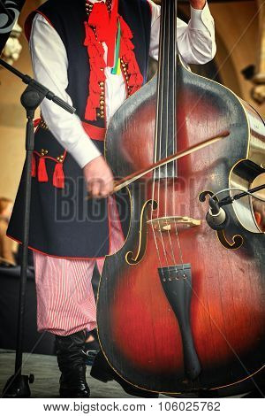 close up of folk musician with contrabass poster
