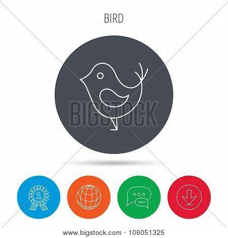 Bird with beak icon. Social media concept sign.