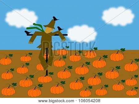 Scarecrow Looking Down On A Field Of Pumpkins
