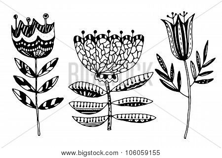 Set of hand-painted flowers. Ink pen, a clear outline. Each object is integrated into the group. Sto