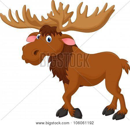 Illustration of moose cartoon