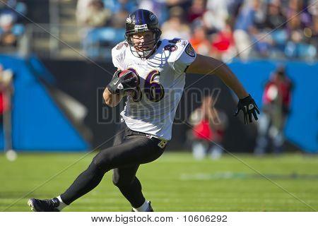 Nfl:  Nov 21 Baltimore Ravens Vs Carolina Panthers