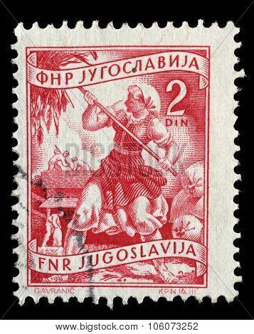 YUGOSLAVIA - CIRCA 1952: A stamp printed in Yugoslavia shows woman to harvest sunflowers, domestic economy series, circa 1952