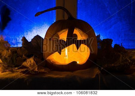Pumpkin Photo For A Holiday Halloween.