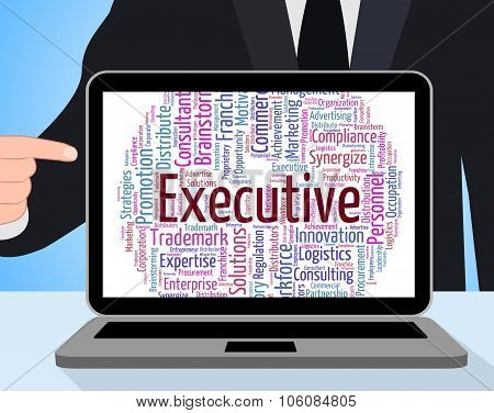 Executive Word Indicates Director General And Boss