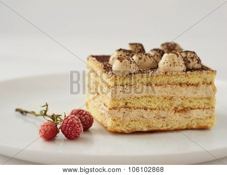 piece of cake with cocoa and frozen raspberries flowers