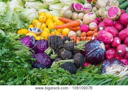 Vegetables, herbs and salad
