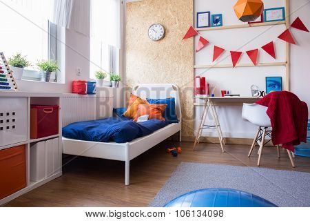 Modern Designed Teen Boy Bedroom
