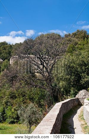 Medieval Wall And Trees