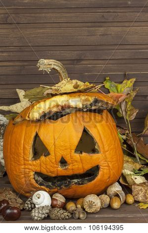 Old moldy pumpkin. Remembering Halloween celebration. Rot on the pumpkin