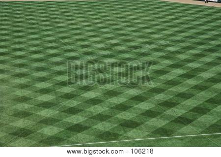 Baseball Stadium Grass