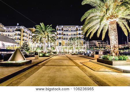Palm Trees And The Buildings In The Night Lights In Marina Porto Montenegro, Tivat, Montenegro